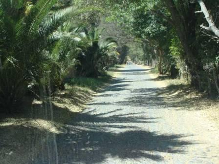The road into the RV park in Guadalajara, MX