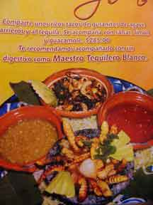 How would you like Worms for lunch? A menu from Tequila, MX